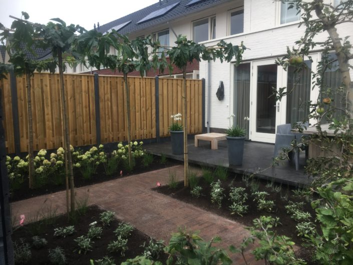 Goedkoop tuin aanleggen epe budgettuin