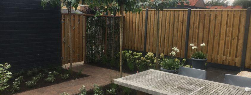 planten in de tuin, hovenier barneveld, schaffelaar hoveniers